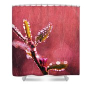 Circles From Nature - C33st04a Shower Curtain