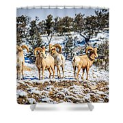 Circling The Wagons Shower Curtain