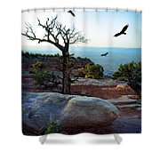 Circling Vultures Shower Curtain