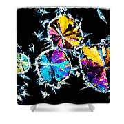 Citric Acid Crystals In Polarized Light Shower Curtain