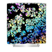 Citric Acid Microcrystal Colorful Abstract Art Shower Curtain