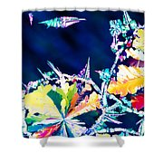 Citric Acid Microcrystals Color Abstract Art Shower Curtain