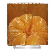 Citrus Bowl  Shower Curtain