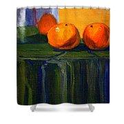 Citrus Chrome Shower Curtain