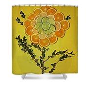 Citrus Fruit Shower Curtain