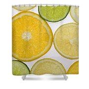 Citrus Slices Shower Curtain