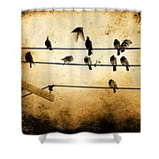 City Dwellers Shower Curtain