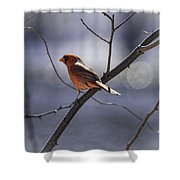 City Lights Shower Curtain by Thomas Young