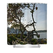 City Of Bremerton Waterfront Park Shower Curtain
