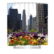 City Of Color Shower Curtain