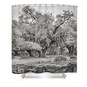 City Park Giants - Paint Bw Shower Curtain