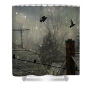 City Snow Shower Curtain