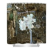 Clafoutis D Emotions - K2at1a Shower Curtain