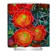 Claret Cup Shower Curtain