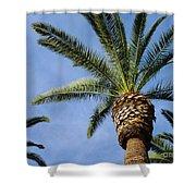 Classic Palms Shower Curtain