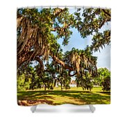 Classic Southern Beauty 2 Shower Curtain