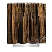 Clay Organ Pipes Formation In Front Shower Curtain