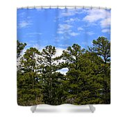 Clean Air Shower Curtain