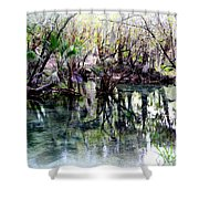 Clear Florida Springs Shower Curtain