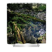 Clearwater Falls Series 17 Shower Curtain