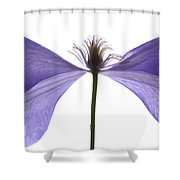Clematis Float Shower Curtain
