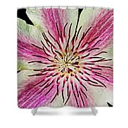 Clematis IIi Shower Curtain