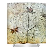 Clematis Virginiana Seed Head Textures Shower Curtain