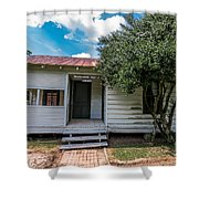 Clementine Hounter House Shower Curtain