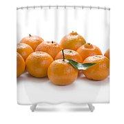 Clementine Oranges On White Shower Curtain