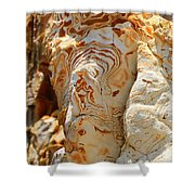 Cliff Face Shower Curtain