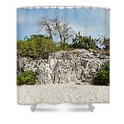 Cliff Stairs 1 Shower Curtain