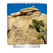Climber At Quail Springs In Joshua Tree Np-ca Shower Curtain
