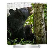 Climbing Lesson Shower Curtain