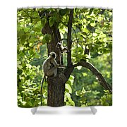Climbing Lessons Shower Curtain