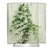 Climbing Shower Curtain
