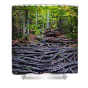 Climbing The Rocks And Roots Of Bald Mountain Shower Curtain