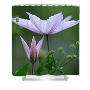 Climbing Upwards Shower Curtain