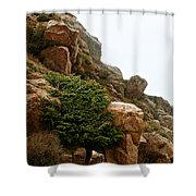 Cling Tight Shower Curtain