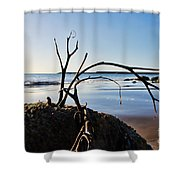 Clinging To The Rocks Shower Curtain