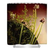 Clipped Stems Shower Curtain