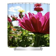 Close Among Them Shower Curtain