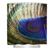 Close Feather Shower Curtain
