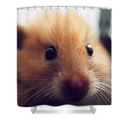 Close Friend Shower Curtain