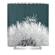 Close-up Dandelion Seeds, Prague, Czech Shower Curtain
