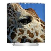 The Giraffe's Eye Shower Curtain