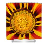 Close Up Marigold Shower Curtain