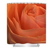 Close Up Of A Rose Bud Shower Curtain