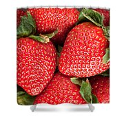 Close Up Of Delicious Strawberries Shower Curtain