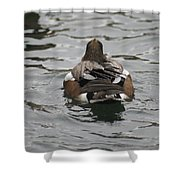 Close Up Of Duck Back Shower Curtain