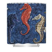 Close-up Of Five Seahorses Side By Side  Shower Curtain